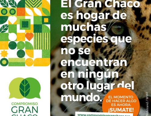 """La Fundación Biodiversidad adhiere a la """"Declaratoria para el futuro de la región chaqueña"""" dentro del marco del Compromiso para el Gran Chaco argentino 2030"""". Sumate!!"""